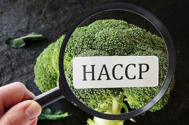 HACCP: che cos'è e procedura di sanificazione