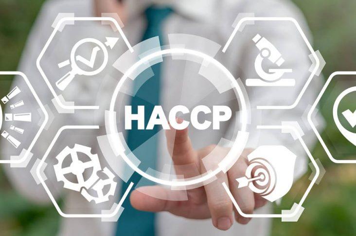I 7 principi dell'HACCP e spiegazioni complete